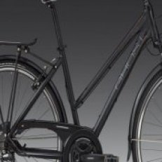 Rám TR 1300 Lady black/grey/cooper 2012
